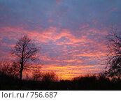 Купить «Осенний закат», фото № 756687, снято 25 октября 2008 г. (c) Нина Солнцева / Фотобанк Лори