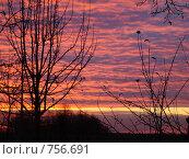 Купить «Осенний закат», фото № 756691, снято 25 октября 2008 г. (c) Нина Солнцева / Фотобанк Лори