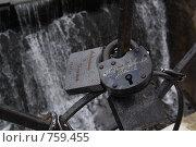 """Купить «Замки на решетке моста. Парк """"Кузьминки"""", Москва», фото № 759455, снято 5 ноября 2008 г. (c) Елена Азарнова / Фотобанк Лори"""