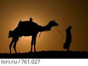 Силуэт человека и верблюда. Стоковое фото, фотограф Здоров Кирилл / Фотобанк Лори