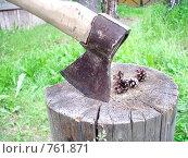 Купить «Топор», фото № 761871, снято 21 июня 2008 г. (c) Илюхина Наталья / Фотобанк Лори