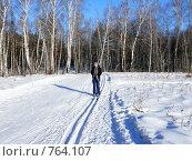 Купить «Лыжница», фото № 764107, снято 23 февраля 2009 г. (c) Алексей Стоянов / Фотобанк Лори