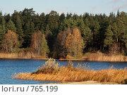 Купить «Желтая осень с красочными деревьями на речном берегу», фото № 765199, снято 27 октября 2006 г. (c) Aleksander Kaasik / Фотобанк Лори