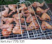 Купить «Крылышки на углях», фото № 770131, снято 13 июня 2008 г. (c) Владислав Семенов / Фотобанк Лори