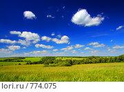 Купить «Летний пейзаж», фото № 774075, снято 12 июня 2008 г. (c) Михаил Коханчиков / Фотобанк Лори