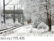 В зимний день у железной дороги. Стоковое фото, фотограф Виталий Фурсов / Фотобанк Лори