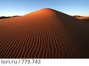 Купить «Поверхность дюны», фото № 779743, снято 6 января 2008 г. (c) Оксана Борц / Фотобанк Лори