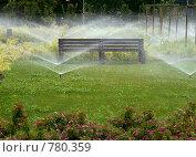 Купить «Автополив газона в городском парке. Утро», фото № 780359, снято 29 июля 2007 г. (c) Demyanyuk Kateryna / Фотобанк Лори