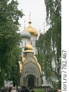 Часовня и Смоленский собор в Новодевичьем монастыре (2008 год). Стоковое фото, фотограф Lana / Фотобанк Лори