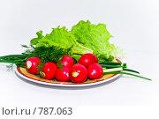Купить «Весенний салат», фото № 787063, снято 1 апреля 2009 г. (c) Алексей Лебедев-Реллер / Фотобанк Лори