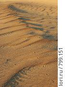 Купить «Песчаные волны и следы», фото № 799151, снято 24 ноября 2006 г. (c) Оксана Борц / Фотобанк Лори