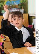 Купить «Первоклассник на уроке поднял руку», фото № 801303, снято 7 апреля 2009 г. (c) Федор Королевский / Фотобанк Лори