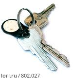 Ключи. Стоковое фото, фотограф Максим Сидоров / Фотобанк Лори