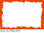 Купить «Рамка из красной икры», фото № 802615, снято 26 мая 2018 г. (c) Галина Короленко / Фотобанк Лори