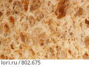 Купить «Кусок хлеба», фото № 802675, снято 30 апреля 2008 г. (c) Галина Короленко / Фотобанк Лори