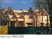 Строительство бревенчатого дома (2008 год). Редакционное фото, фотограф Alexei Tavix / Фотобанк Лори