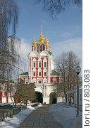 Купить «Новодевичий монастырь», фото № 803083, снято 5 марта 2009 г. (c) Евгений Тиняков / Фотобанк Лори