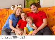 Купить «Счастливая семья с двумя детьми и кошкой на диване», фото № 804523, снято 12 апреля 2009 г. (c) Гладских Татьяна / Фотобанк Лори