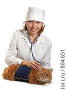 Купить «Ветеринар с кошкой, изолировано», фото № 804651, снято 25 октября 2008 г. (c) Cветлана Гладкова / Фотобанк Лори