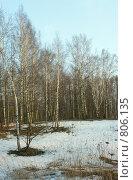 Купить «Весенний пейзаж», фото № 806135, снято 13 апреля 2009 г. (c) Александр Шуть / Фотобанк Лори