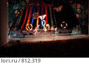 Купить «Спектакль в театре», фото № 812319, снято 9 января 2009 г. (c) Losevsky Pavel / Фотобанк Лори