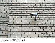 Камера видеонаблюдения на кирпичной стене. Стоковое фото, фотограф Алексей Лобанов / Фотобанк Лори