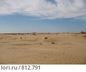Пустыня (2009 год). Стоковое фото, фотограф Екатерина Петрова / Фотобанк Лори