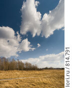 Весенний пейзаж, фото № 814791, снято 15 апреля 2009 г. (c) Юрий Бельмесов / Фотобанк Лори