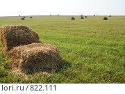 Купить «Поле, сено и небо», фото № 822111, снято 7 сентября 2008 г. (c) Дятлов Антон / Фотобанк Лори