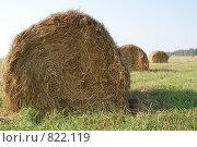 Купить «Поле, сено и небо», фото № 822119, снято 7 сентября 2008 г. (c) Дятлов Антон / Фотобанк Лори