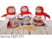 Купить «Зерновушки», фото № 827171, снято 31 марта 2009 г. (c) Георгий Марков / Фотобанк Лори