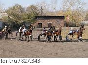 Рысистый заезд (2008 год). Редакционное фото, фотограф Юлия Орина / Фотобанк Лори