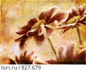Купить «Открытка с цветами в винтажном стиле», фото № 827679, снято 10 марта 2008 г. (c) Вероника Галкина / Фотобанк Лори