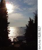Купить «Летнее кафе у моря», фото № 828927, снято 1 марта 2008 г. (c) Анастасия Иванова / Фотобанк Лори