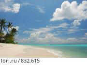Купить «Мальдивы. Тропический пейзаж», фото № 832615, снято 10 октября 2008 г. (c) Владимир Овчинников / Фотобанк Лори