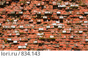 Купить «Фон в стиле гранж, разбитая кирпичная стена», фото № 834143, снято 19 ноября 2017 г. (c) Александр Fanfo / Фотобанк Лори