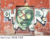 Купить «Современное граффити», фото № 834159, снято 21 января 2018 г. (c) Александр Fanfo / Фотобанк Лори