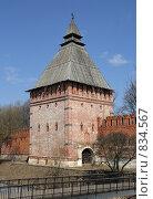 Купить «Вид на Копытенскую башню и крепостную стену, г. Смоленск», фото № 834567, снято 9 апреля 2009 г. (c) Denis Kh. / Фотобанк Лори