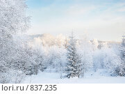 Зимний пейзаж. Стоковое фото, фотограф Вячеслав Зитев / Фотобанк Лори