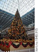 Купить «Рождественская елка в торговом центре», фото № 840915, снято 2 января 2009 г. (c) Безрукова Ирина / Фотобанк Лори