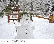 Купить «Хозяин зимней сказки», фото № 841059, снято 29 января 2009 г. (c) Людмила Куклицкая / Фотобанк Лори