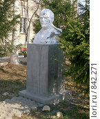 Купить «Бюст Ленина», эксклюзивное фото № 842271, снято 3 августа 2020 г. (c) Василий Пешненко / Фотобанк Лори