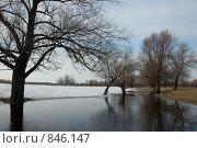 Весенний этюд. Стоковое фото, фотограф Александр Зайцев / Фотобанк Лори