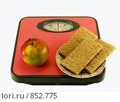 Купить «Диета или как сбросить лишний вес», фото № 852775, снято 23 апреля 2009 г. (c) Инна Грязнова / Фотобанк Лори
