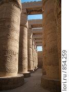 Купить «Колонны в Карнакском храме», фото № 854259, снято 20 ноября 2006 г. (c) Максим Иванов / Фотобанк Лори