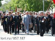 Купить «Военный парад, 9 мая 2009 года. Севастополь, Украина», фото № 857187, снято 9 мая 2009 г. (c) Павел Вахрушев / Фотобанк Лори