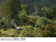 Племена папуасов провинции Ириан Джай (2007 год). Стоковое фото, фотограф Александр Киселев / Фотобанк Лори