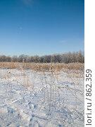 Купить «Зимний пейзаж», фото № 862359, снято 6 января 2009 г. (c) Юрий Егоров / Фотобанк Лори