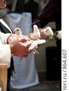Купить «Свадебные голуби», фото № 864607, снято 25 апреля 2009 г. (c) Ирина Литвин / Фотобанк Лори