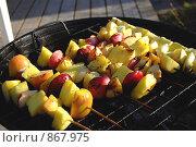 Купить «Барбекю, фрукты на гриле», фото № 867975, снято 16 мая 2009 г. (c) Tamara Sushko / Фотобанк Лори